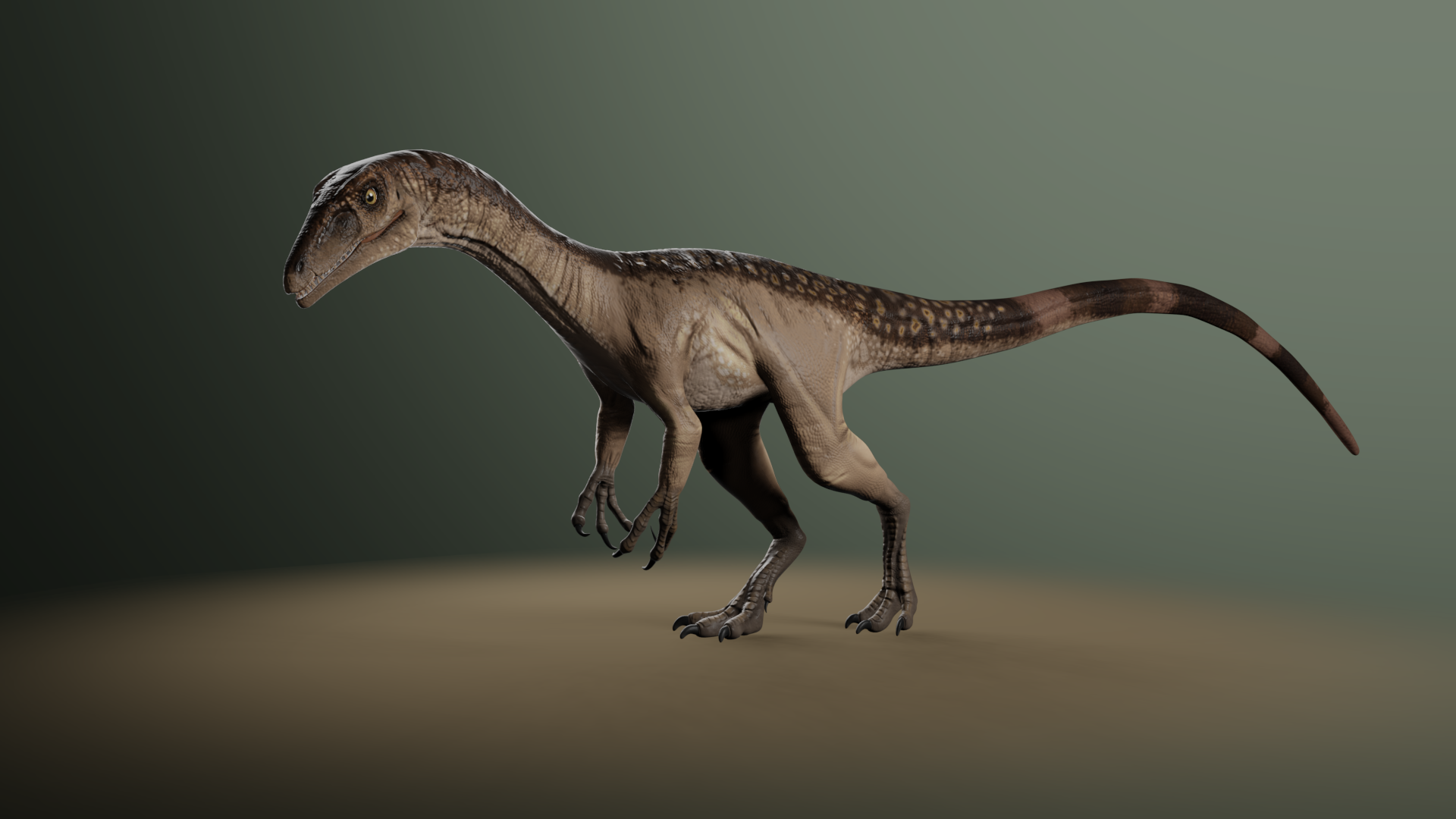 Tawa hallae, a dinosaur from the Triassic period.